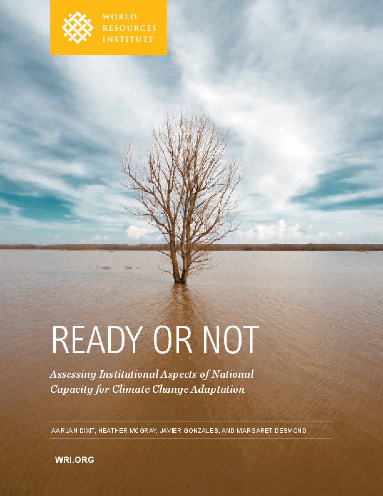 Ready or Not: Assessing National Institutional Capacity for Climate Change Adaptation