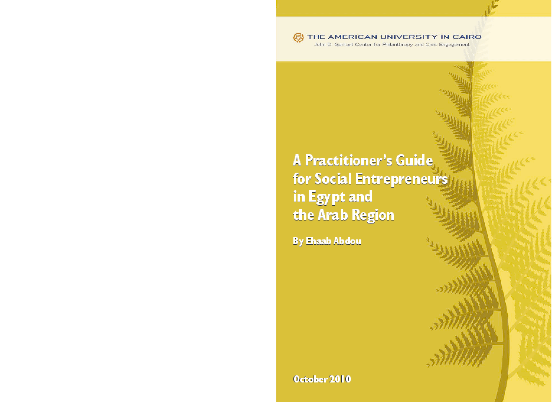 A Practitioner's Guide for Social Entrepreneurs in Egypt and the Arab Region