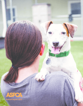 ASPCA Annual Report 2013