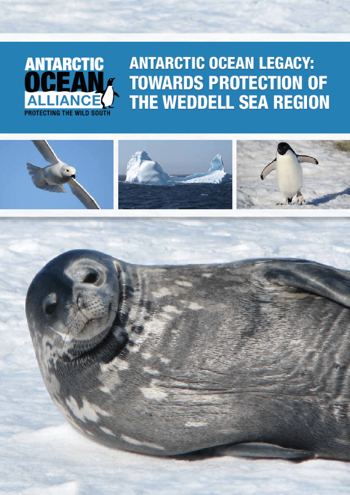 Antarctic Ocean Legacy: Towards Protection of the Weddell Sea Region
