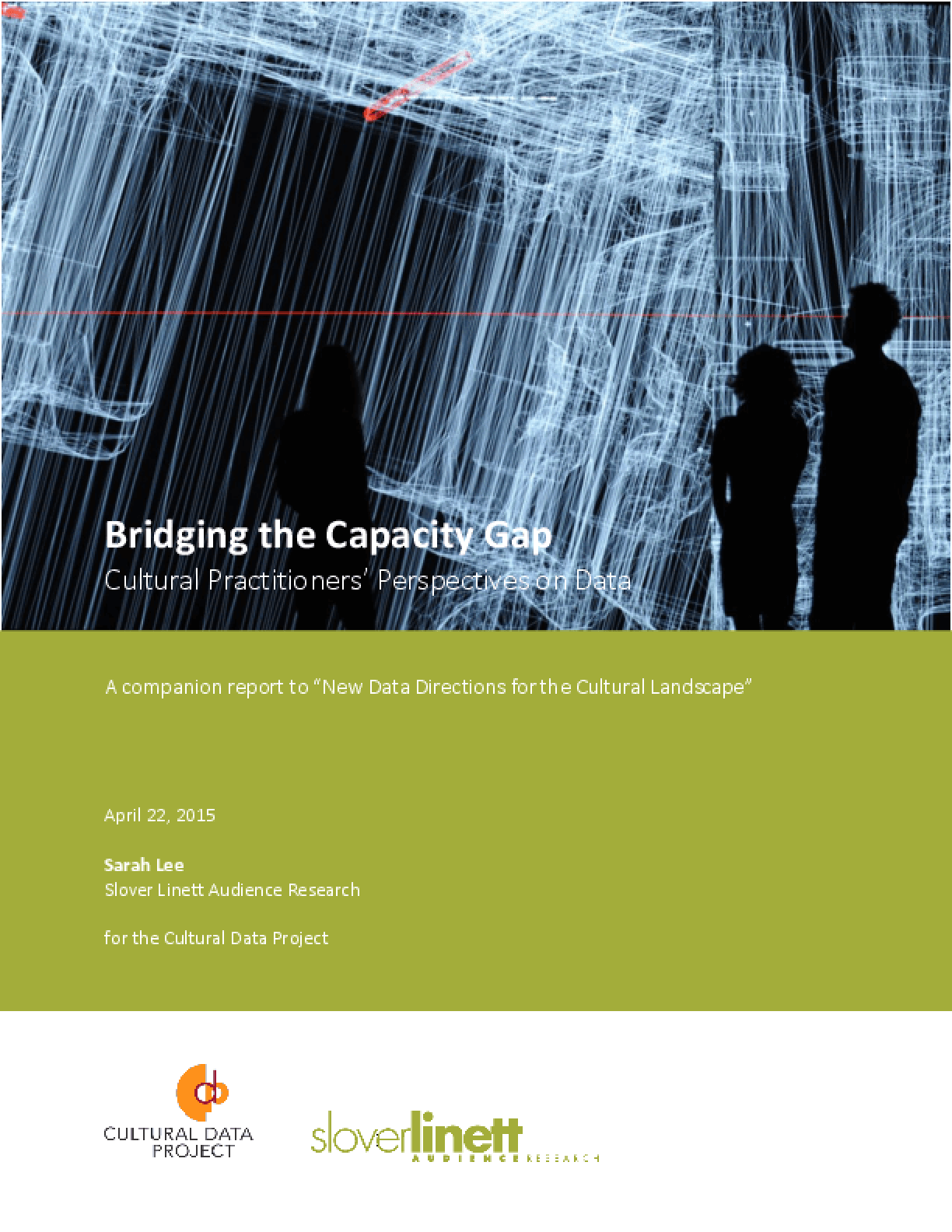 Bridging the Capacity Gap: Cultural Practitioners' Perspectives on Data