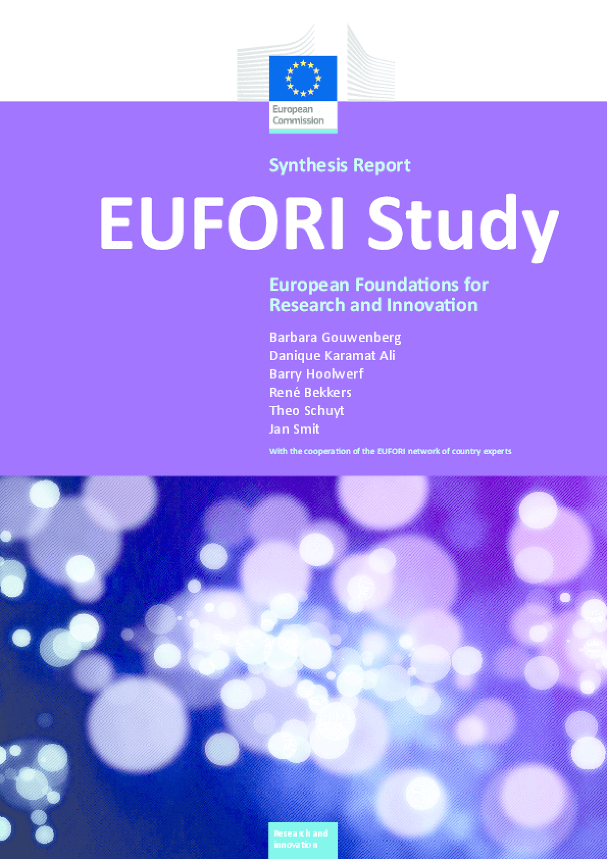 EUFORI Study: European Foundations for Research and Innovation (Synthesis Report)