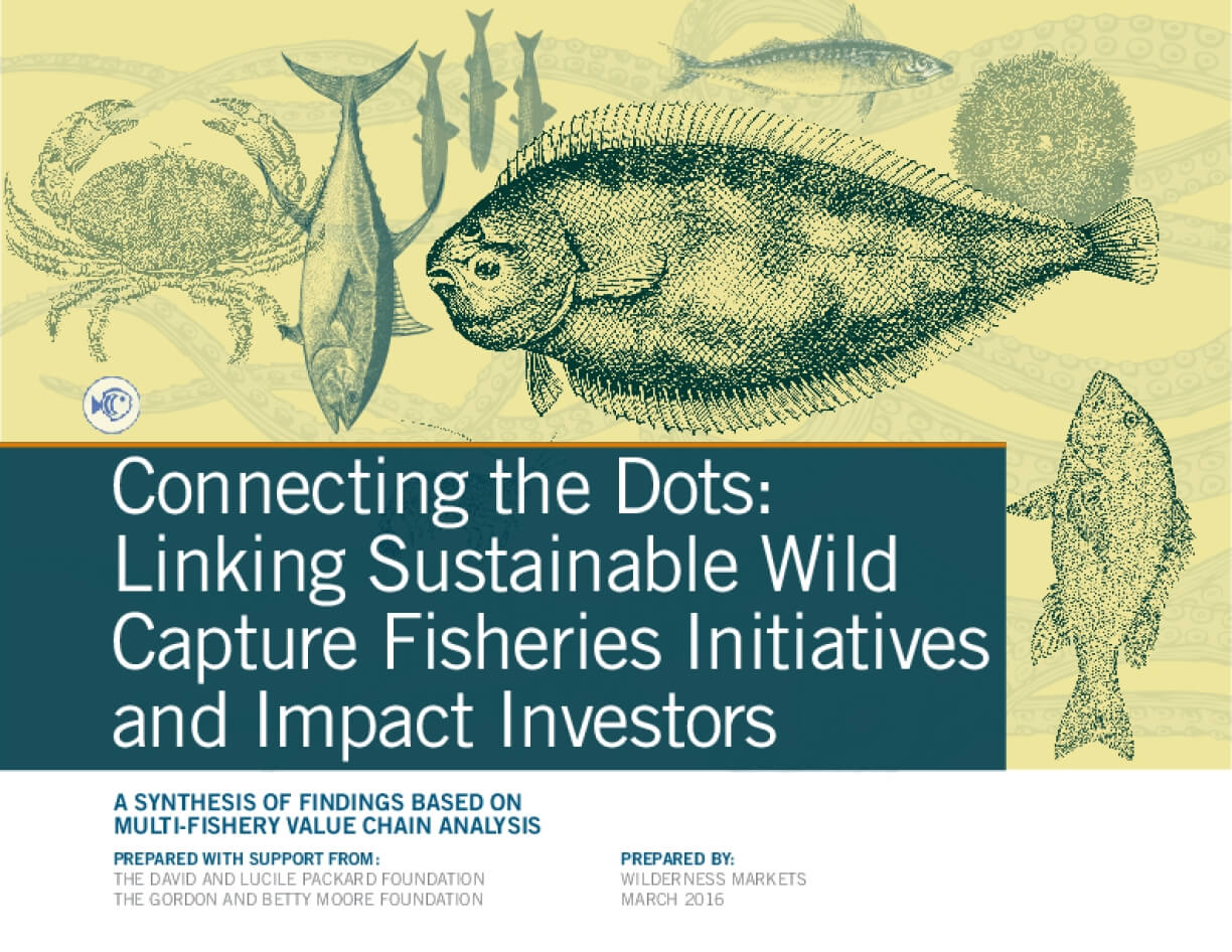 Connecting the Dots: Linking Sustainable Wild Capture Fisheries Initiatives and Impact Investors