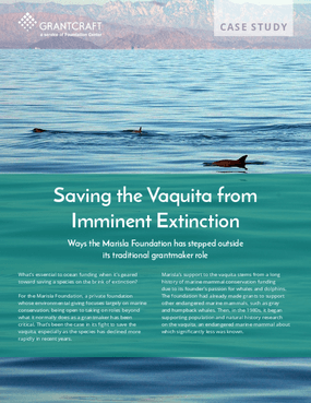 Saving the Vaquita from Imminent Extinction