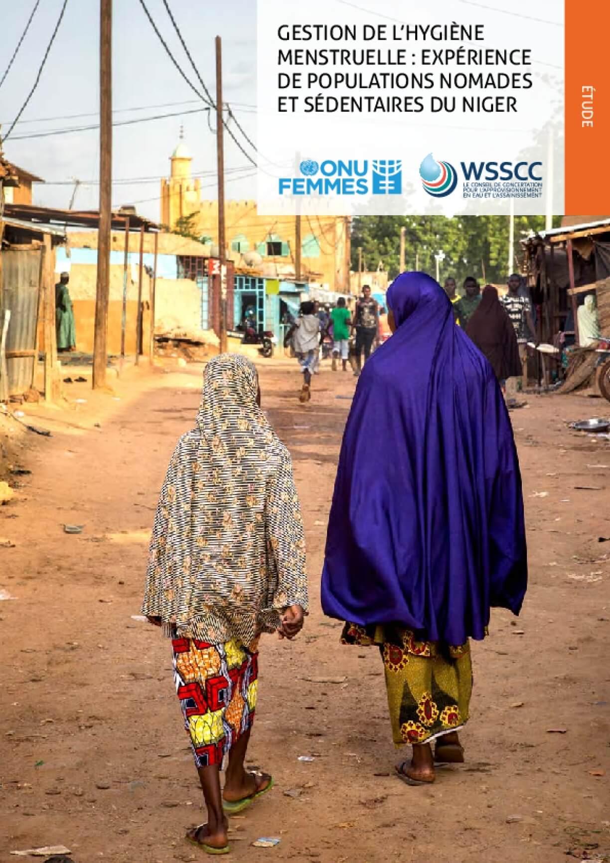 Gestion De L'hygiène Menstruelle: Expérience De Populations Nomades Et Sédentaires Du Niger