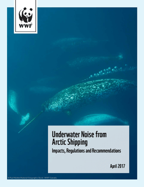 Underwater Noise from Arctic Shipping: Impacts, Regulations and Recommendations