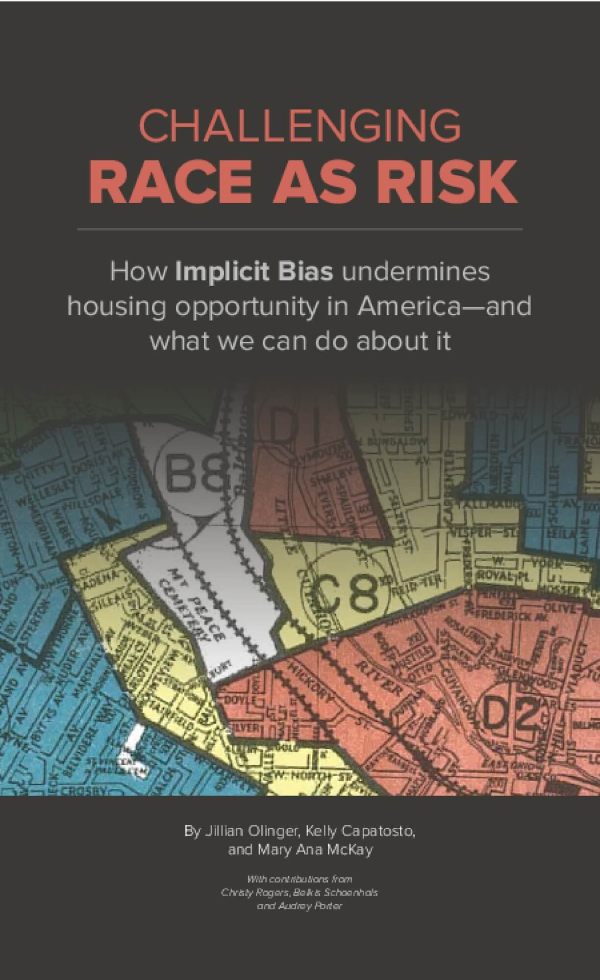 Challenging Race as Risk: Implicit Bias in Housing