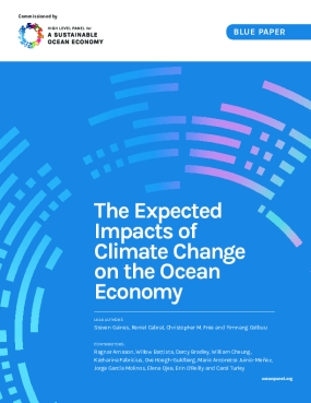 The Expected  Impacts of Climate Change on the Ocean Economy
