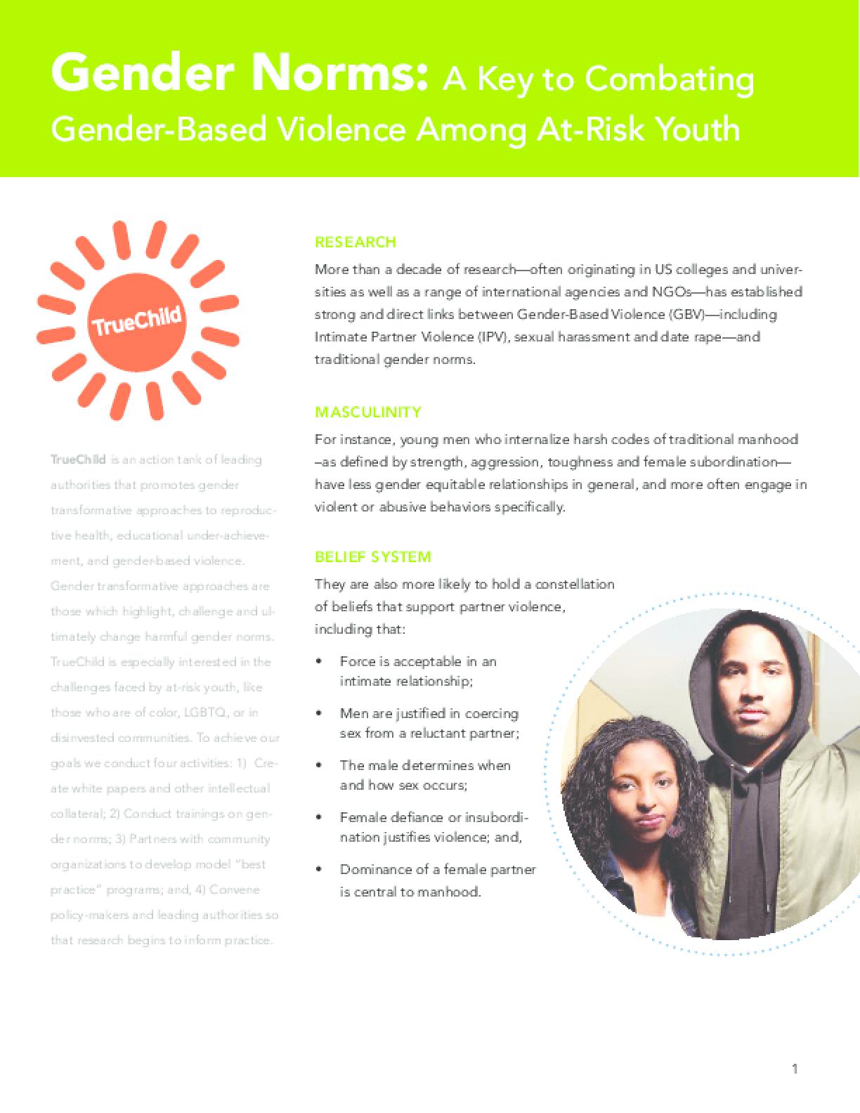 Overview: Gender Norms, Partner Violence & Bullying