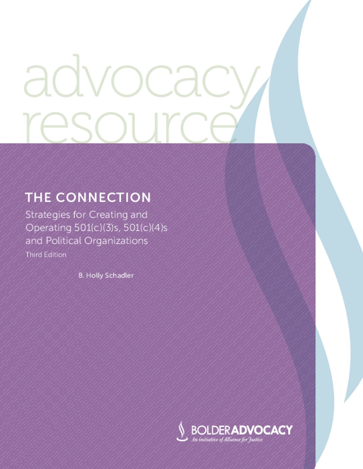 The Connection: Strategies for Creating and Operating 501(c)(3)s, 501(c)(4)s, and Political Organizations