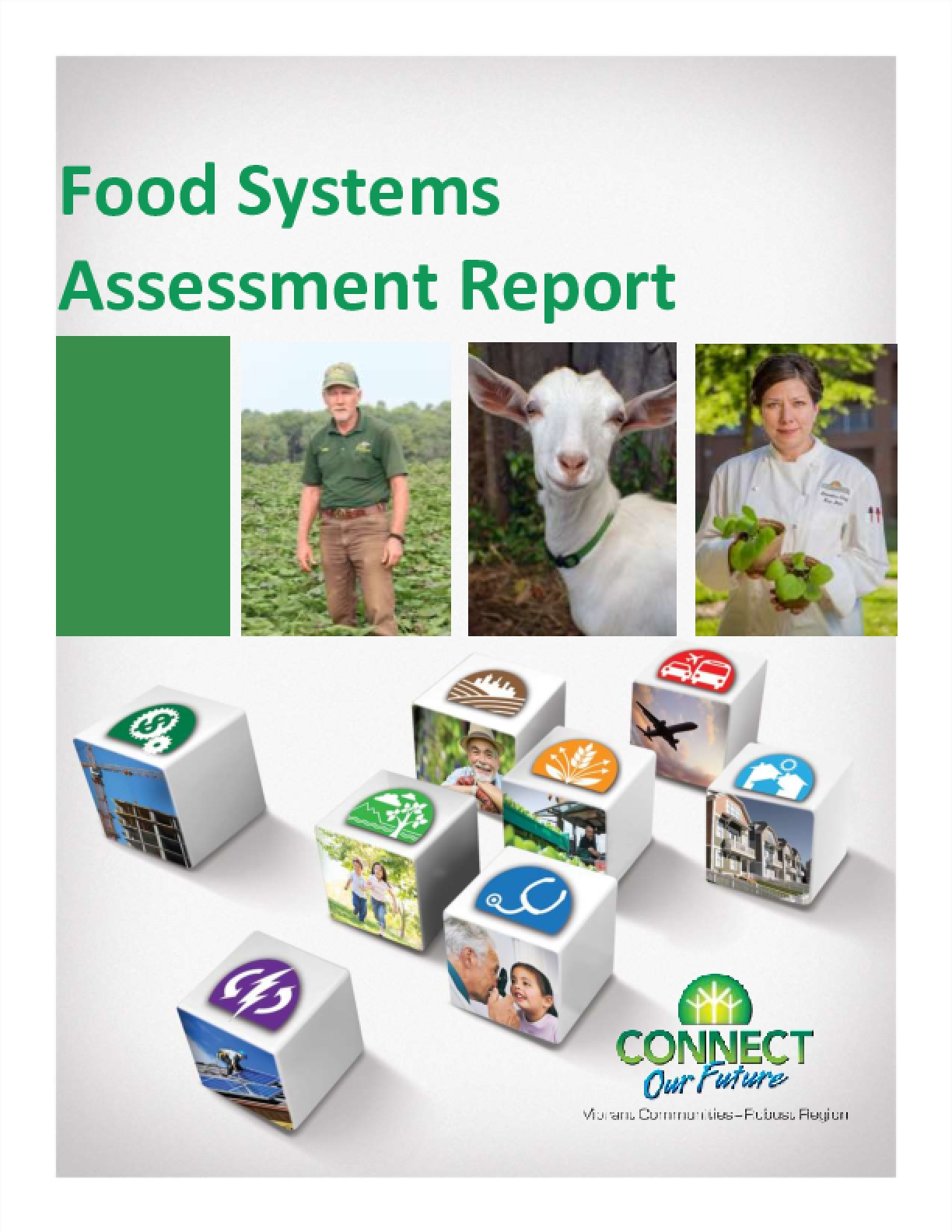 Food Systems Assessment Report