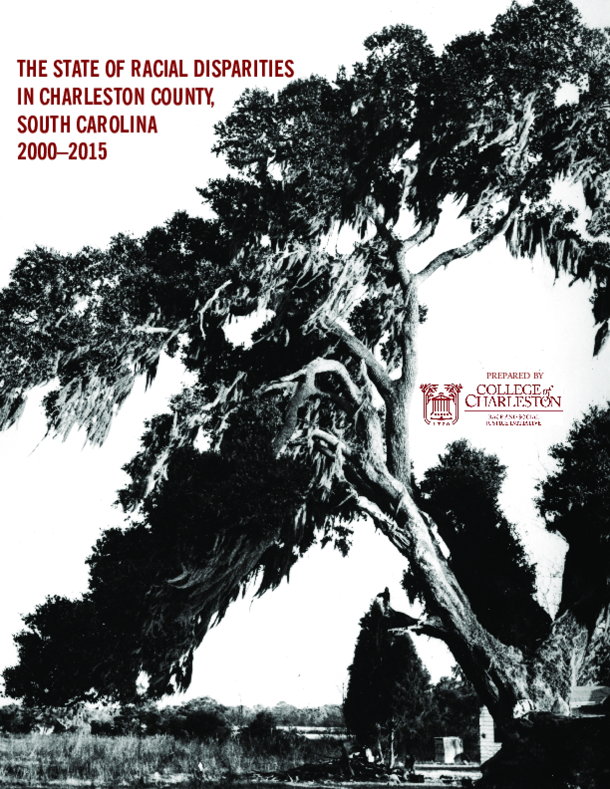 The State of Racial Disparities in Charleston County, South Carolina 2000-2015