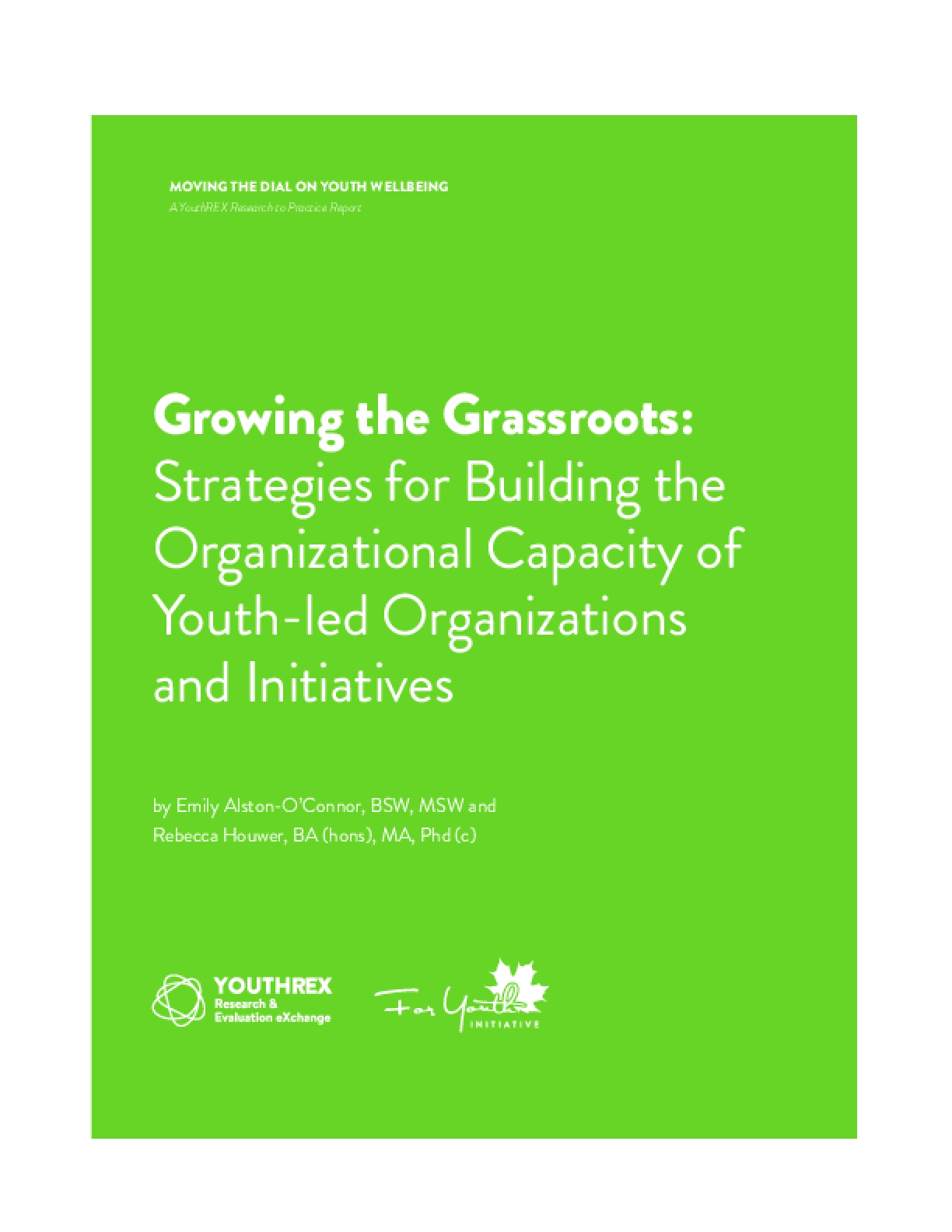 Growing The Grassroots: Strategies For Building The Organizational Capacity Of Youth-Led Organizations And Initiatives