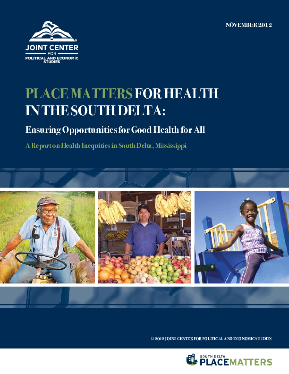 Place Matters for Health in the South Delta: Ensuring Opportunities for Good Health for All, A Report on Health Inequities in South Delta, Mississippi