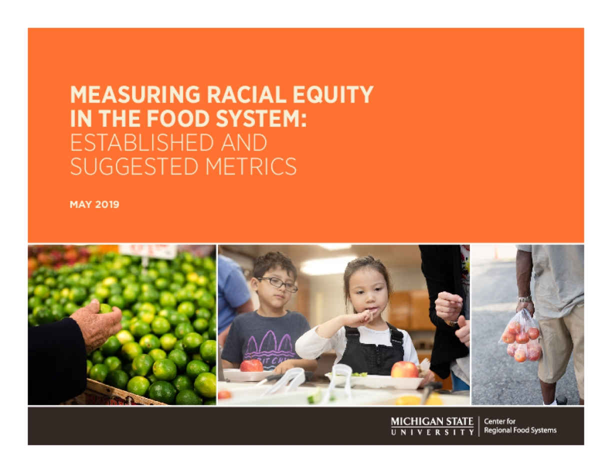 Measuring Racial Equity in the Food System: Established and Suggested Metrics