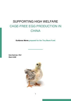 Supporting High Welfare Cage-Free Egg Production in China